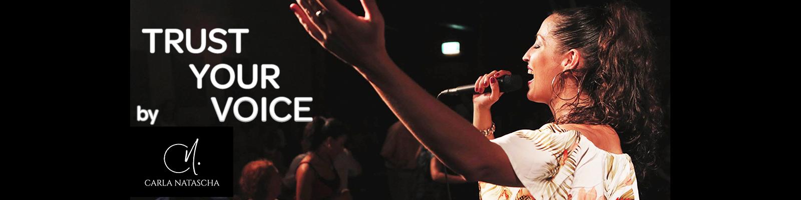 Gesangsunterricht Wien LIVE und Online Bild